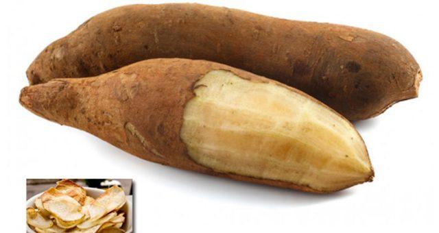 """Blog Saúde   Batata Yacon - """"Doce para diabéticos"""""""