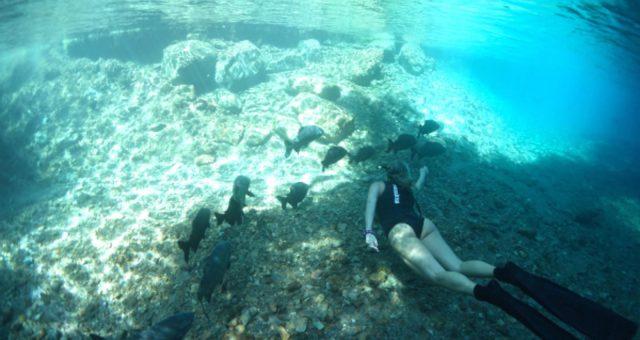 Karol Meyer mergulha na magia de Bonaire