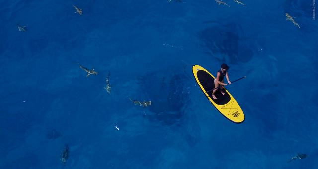 O Método Mormaii para praticantes de Surf e SUP